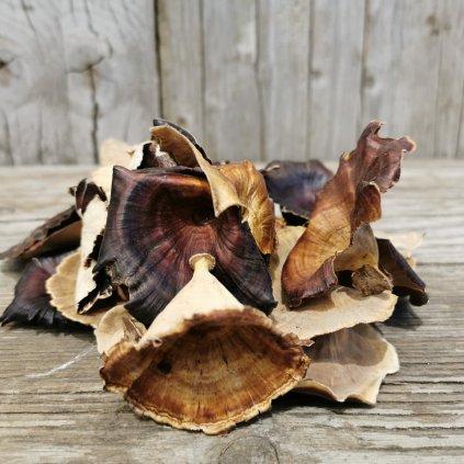 huba sušená prírodná dekorácia na aranžovanie 3 až 6cm cena za 1ks