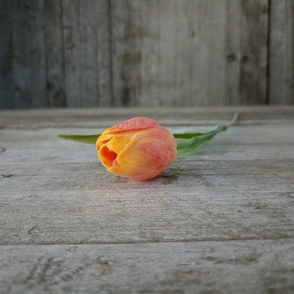 tulipán oranžovo žltý jemne bielený 42CM cena za 1ks