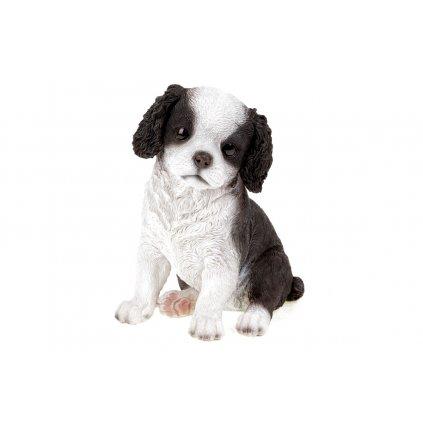 Kráľovský psík v čiernobielej farbe,sediaci,polyresinová dekorácia,16x20x13cm