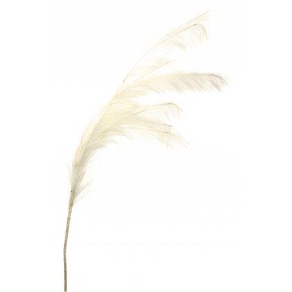 vetvička pampová tráva 122x10x3cm
