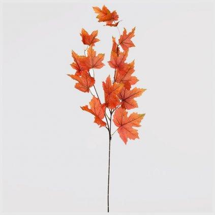32785 vetvicka listy oranz hnede 75