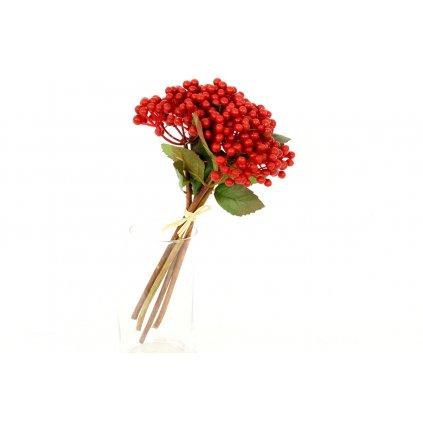 Jarabina červená - prízdoba 14x27cm