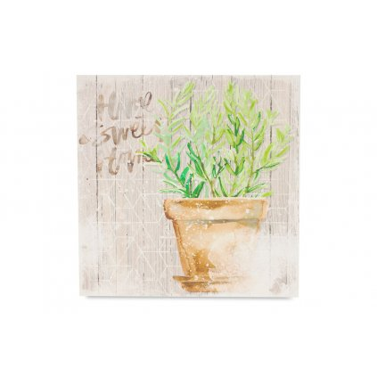 Obraz na plátne rozmarín 28x28x1,5cm