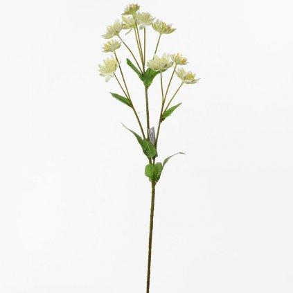 ASTRANTIA ZELENÁ umelý kvet  58CM