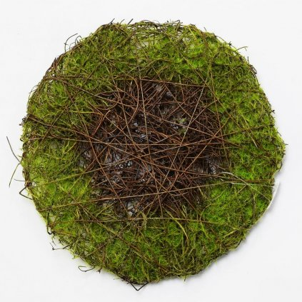 PODLOŽKA PRÚTIE zelená prírodná  20CM