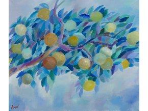 Větev s ovocem