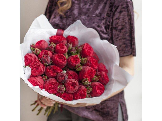 Růže Red Piano