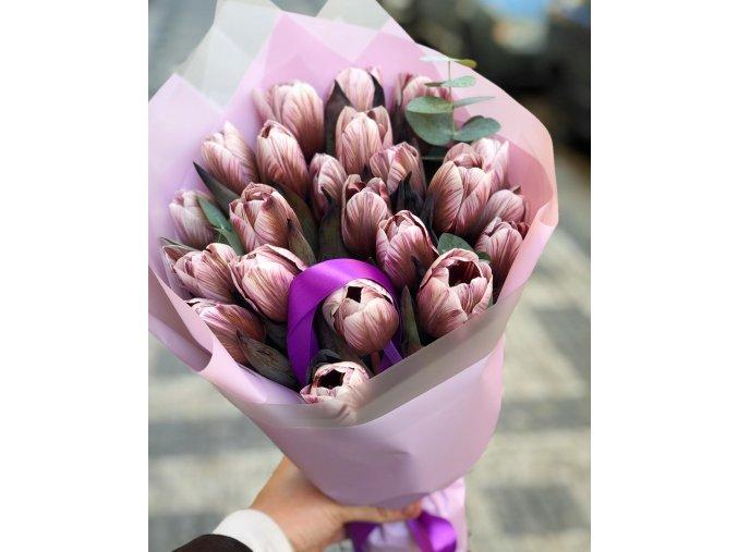 Tulipány Pivoňkové (růžové)