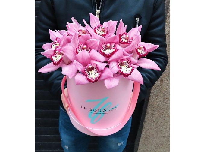 Flower Box #4