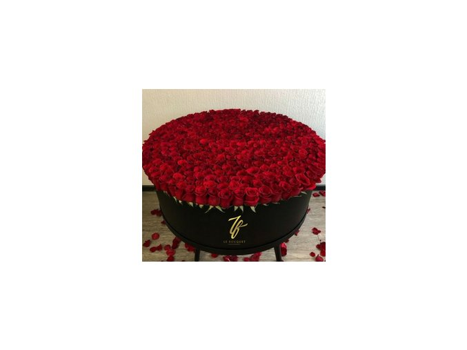 Flower Box #5