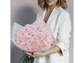 Karafiáty - jemně růžové
