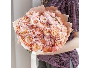 Růže Julieta Spray
