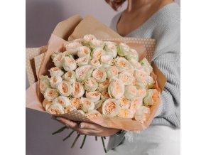 Růže Pavlova