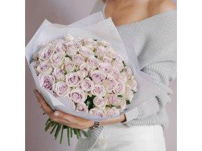 Růže Morning Dew