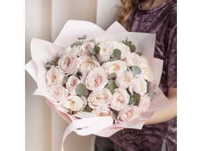 Růže Keira (David Austin)