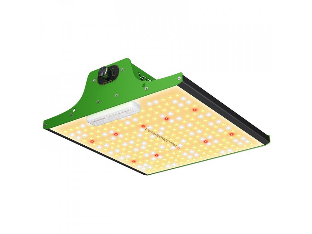 ViparSpectra ProSeries P600 1