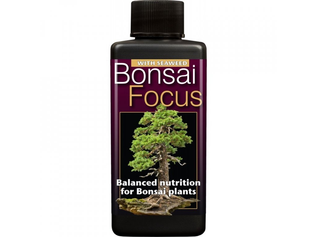 Wachstumstechnologie Bonsai Fokus (Growth Technology Bonsai Focus 100ml)