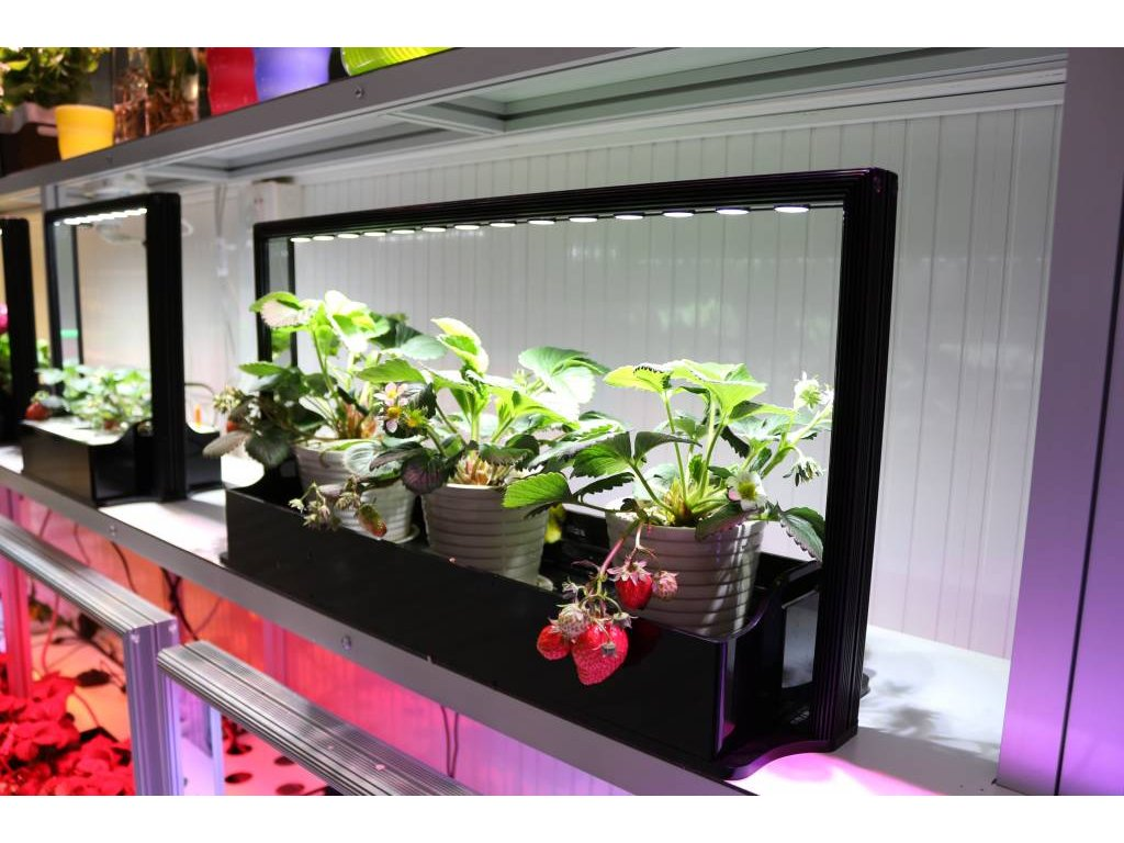 parus plant light mini farm m20