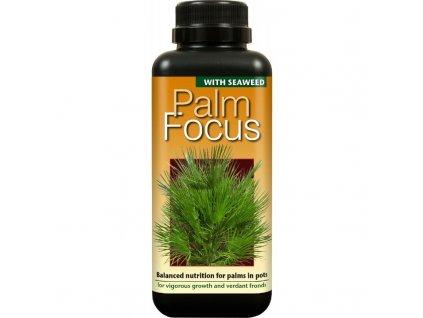 15785 palm focus 300ml