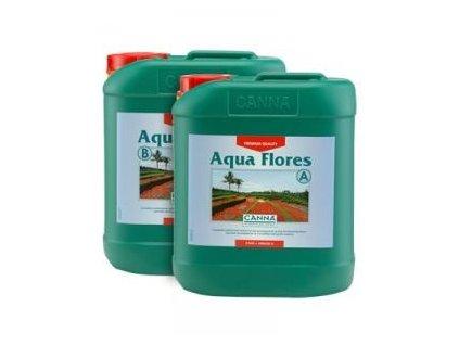 3786 1 canna aqua flores a b 10l