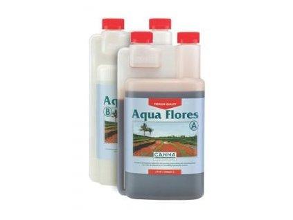3801 1 canna aqua flores a b 1l