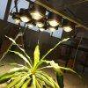 450w LED glass lens kit