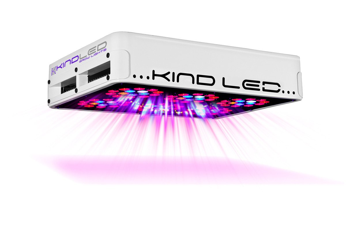 Kind Led grow light vs HPS