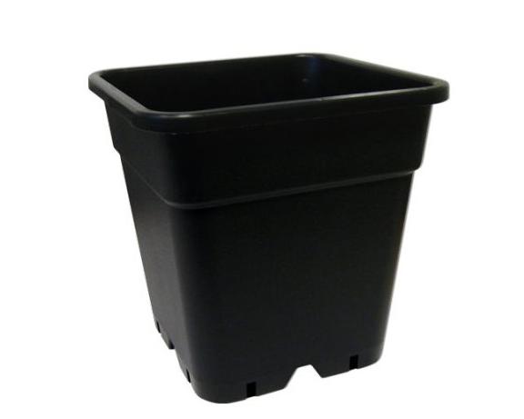 Wilma Flowerpots