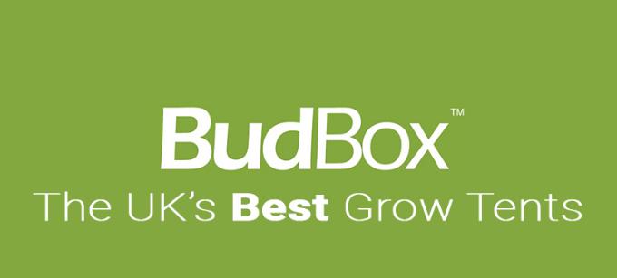 BUDBOX TENTS