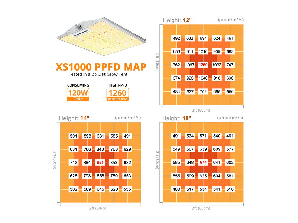 XS Series square 1 1600x1600