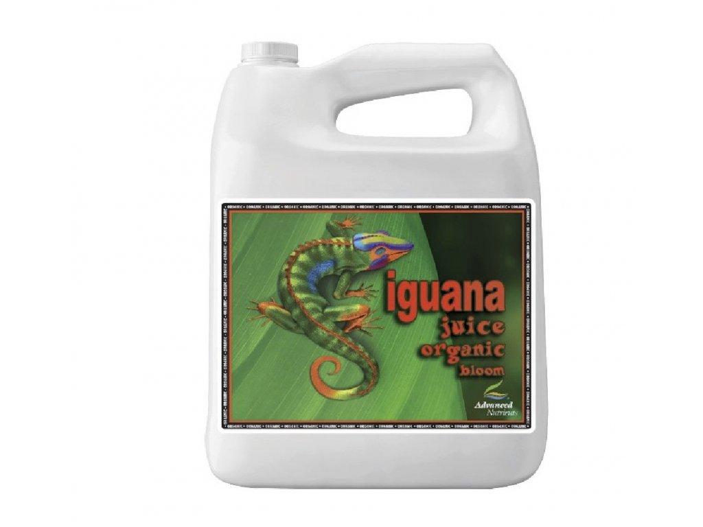 AN - Iguana Juice Organic Bloom
