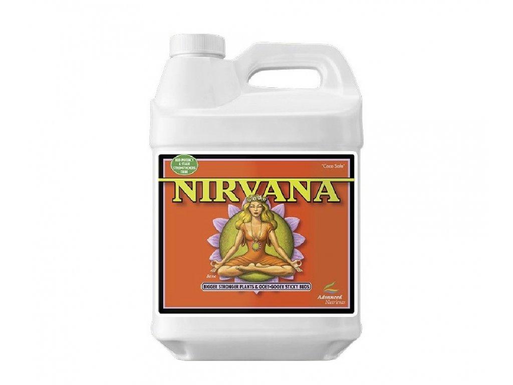 AN - Nirvana