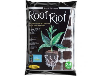 Root Riot 24 - planting cubes in the planter