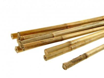 Bamboo stick, 120cm