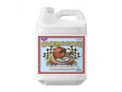 AN - Overdrive