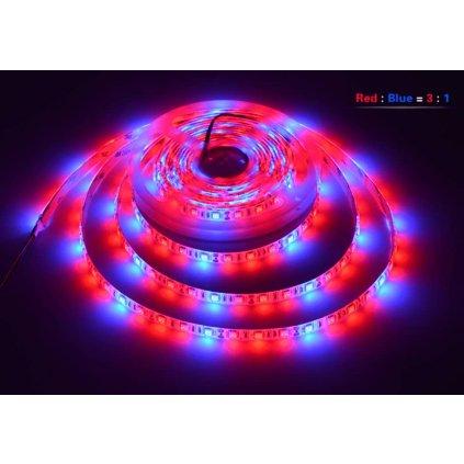 led grow pasek r3b1