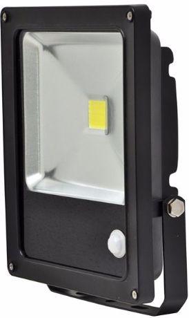 Schwarz LED Fluter mit Bewegungsmelder 30W Tageslicht