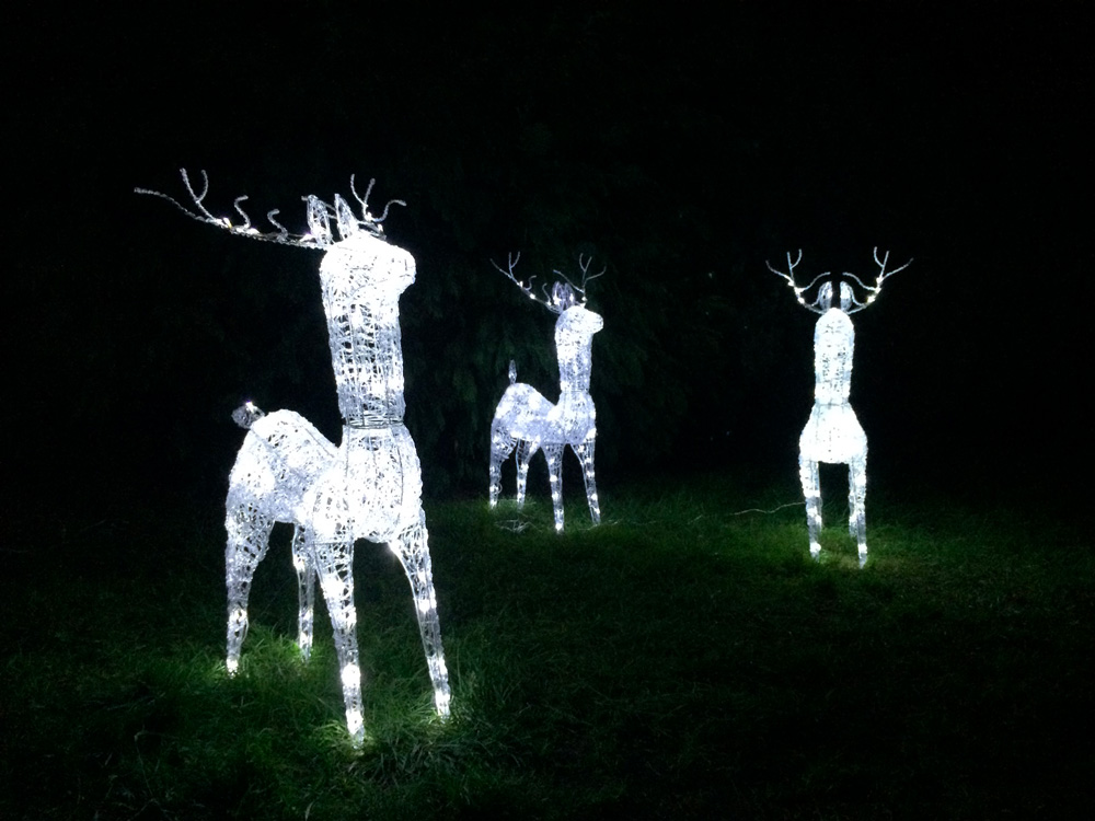 LED osvětlení zahrady sob 5