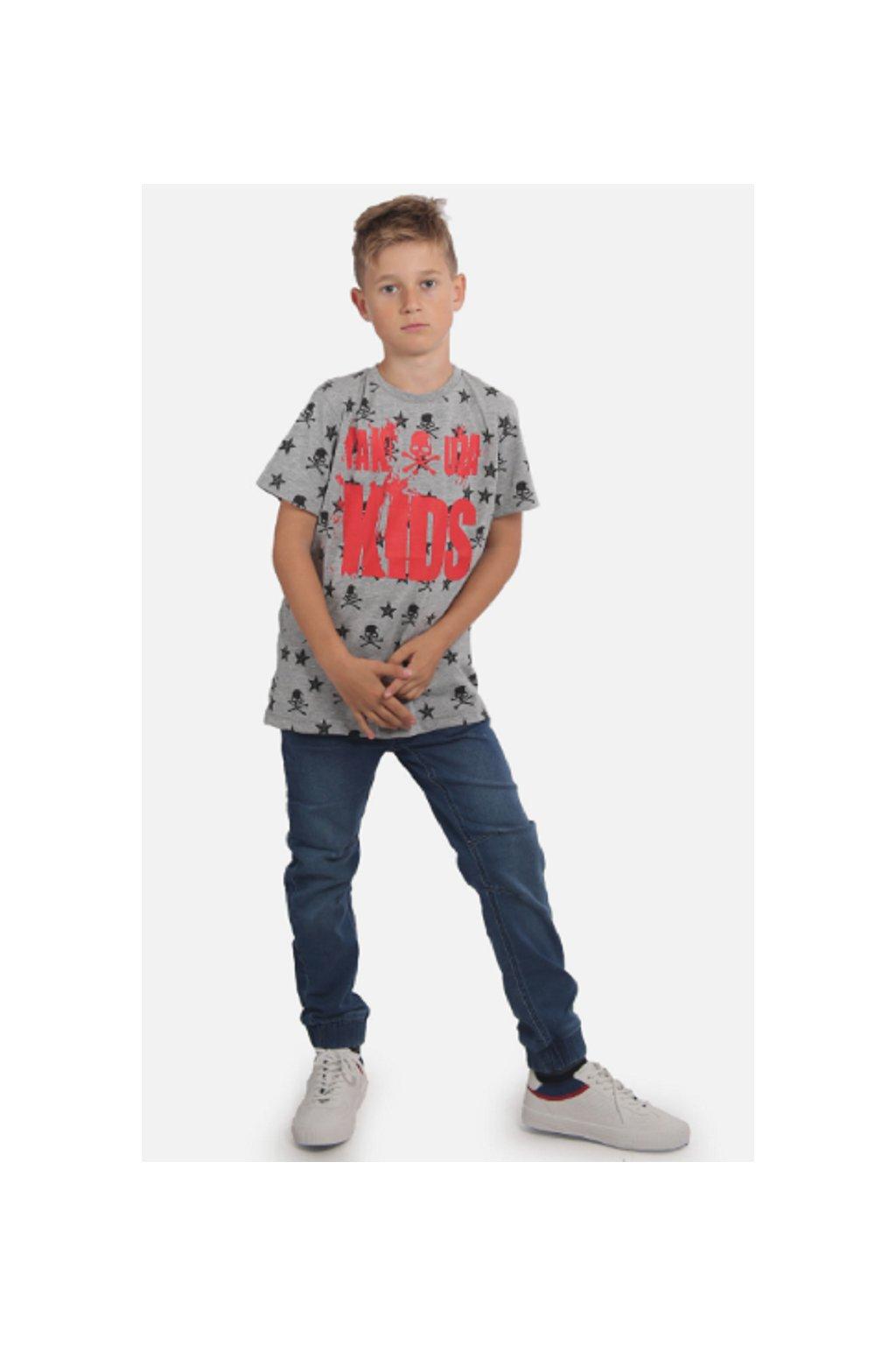 Yakuza dětské tričko SKULL N STARS TSB 15408 grey obr1