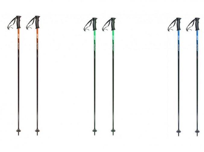 Lyžiarske palice Ski Pole