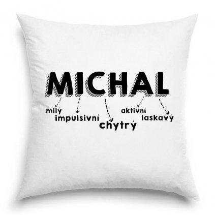 Polštář se jménem Michal