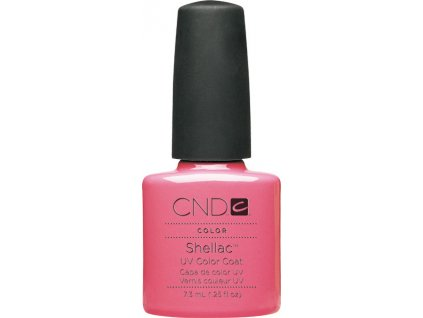 SHELLAC - gotcha 7,3 ml