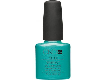 SHELLAC - hotski 7,3 ml