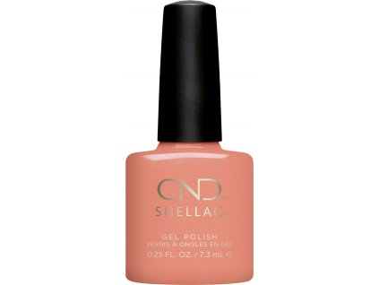SHELLAC UNINHIBITED