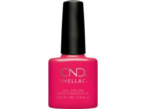 SHELLAC OFFBEAT