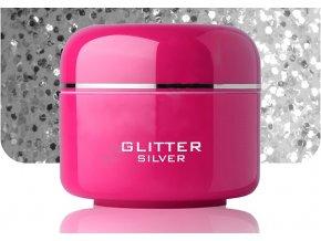Barevný gel silver glitter 5 ml