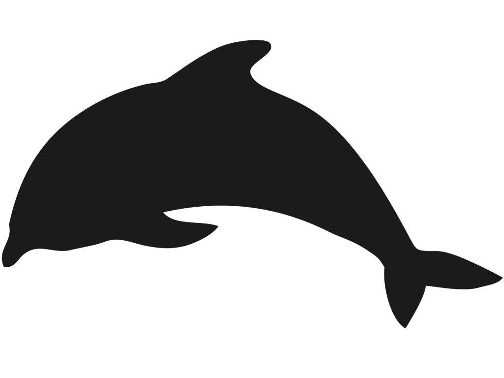 tabule na zed delfin