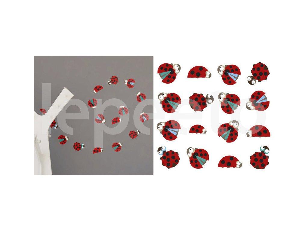 Berunky COLOURFUL - samolepky na zeď