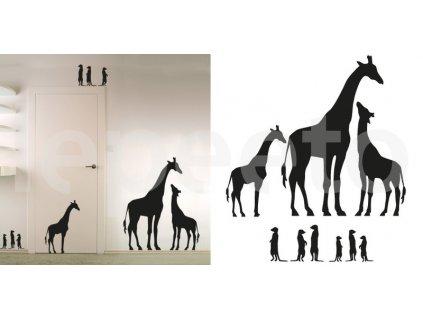 Žirafa s mláďaty a tlupa zvědavých surikat - siluety - permanentní samolepky na zeď i okno