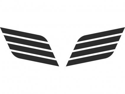 car244